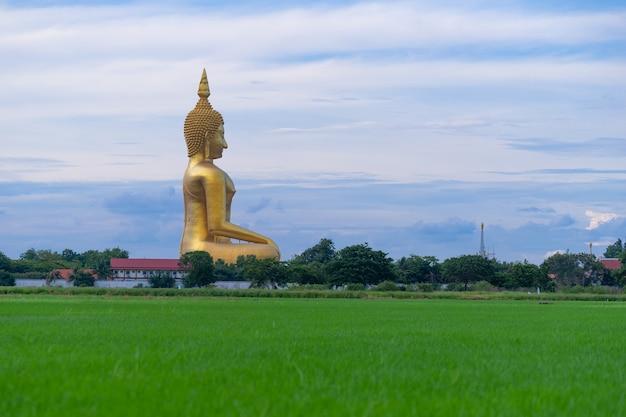 豊かなフィールド、タイのワット・ムアン・アンソン(wat muang angthong)人気仏教寺院のある大きな金色の仏。