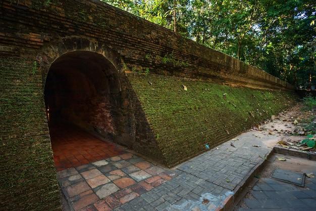 Wat umong suan puthathamはタイのチェンマイにある仏教寺院です。