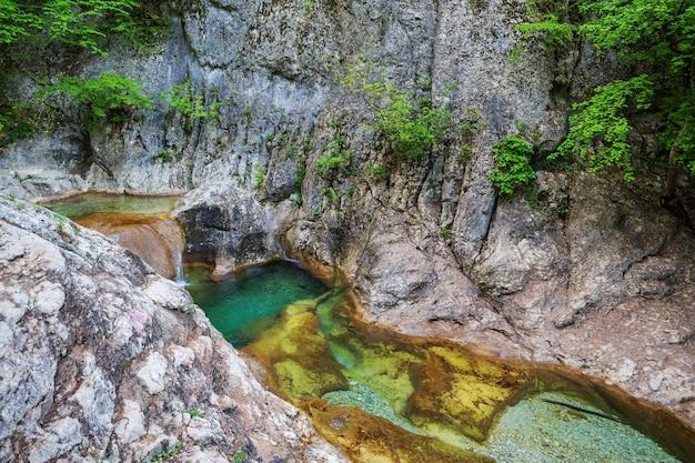 緑の春の森の滝。