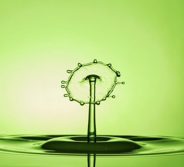 Water drop collisions macro