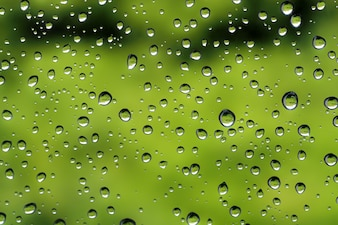 Water droplets after rain on green glass