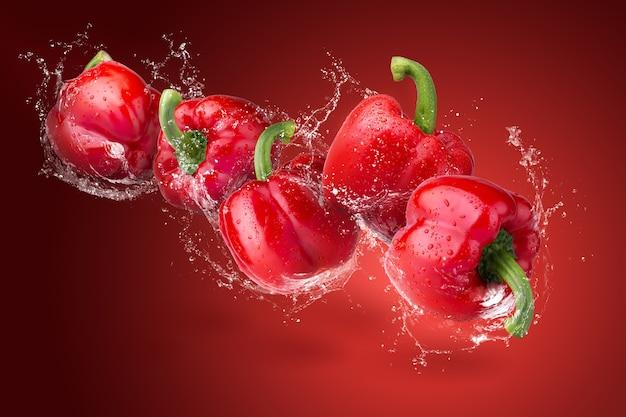 흰색 배경에 고립 된 빨간 피망에 물방울