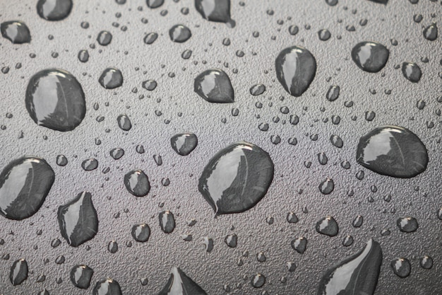Water drops on black blackground .