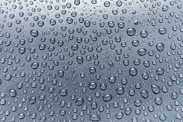 Water drops on gray background, for design and pattern background