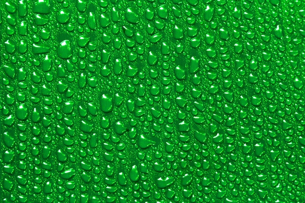 Water drops on a green banana leaf background.