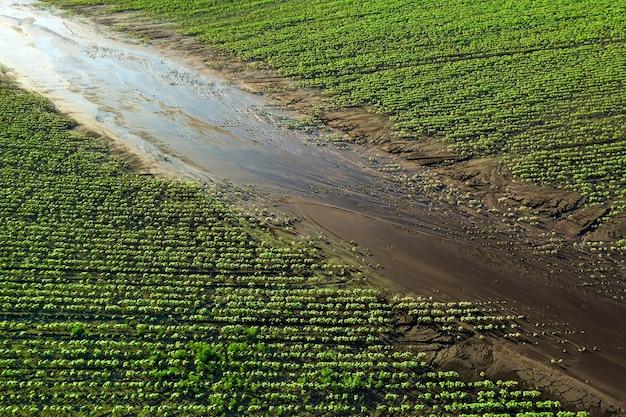 Водная эрозия почвы