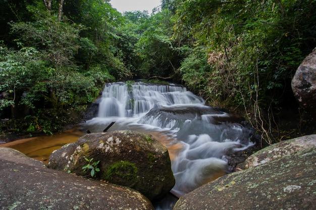 Water fall in wild