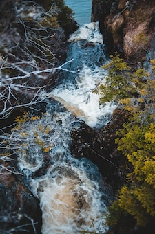 黄色と緑の木々の真ん中に水が落ちる