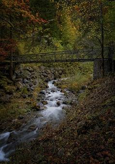 茶色の木の橋を流れる水