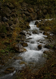 흐르는 물, 강 무료 사진