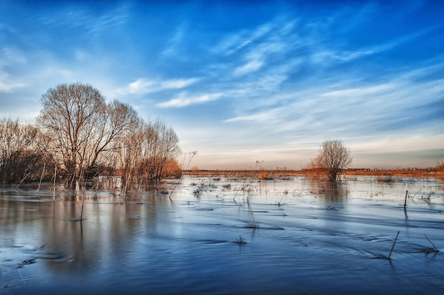 푸른 하늘 아래 봄에 강물이 넘쳐 범람 한 들판