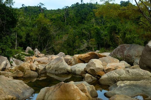 Вода посреди скал с покрытой лесом горой