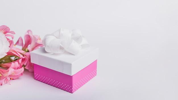 Fiore della ninfea e contenitore di regalo isolato su fondo bianco