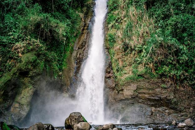 Вода водопада плещется в реку посреди тропического леса турриальба, коста-рика