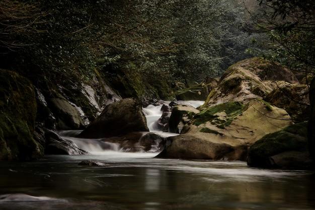 조지아의 아프로디테 온천에서 이끼 덮은 돌에서 떨어지는 야생 산 강의 물