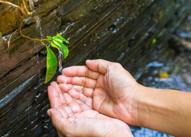 自然の背景、環境問題で子供の手に注ぐ水