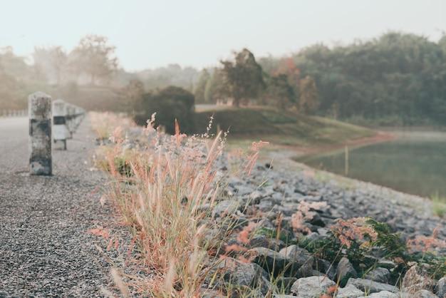 Water reservoir dam road