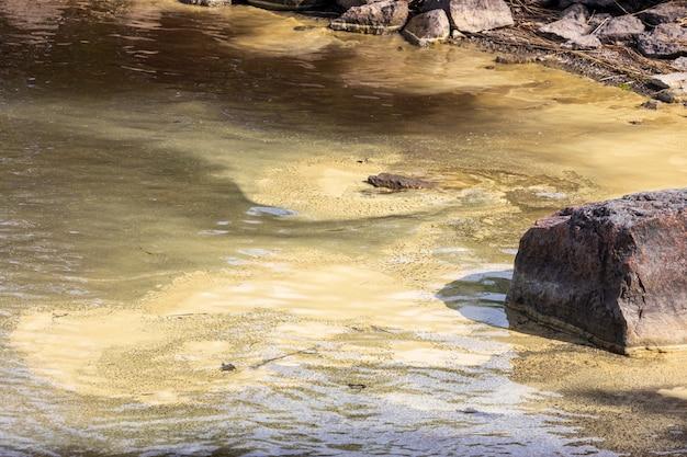 廃棄物のある水空間。汚染。高品質の写真