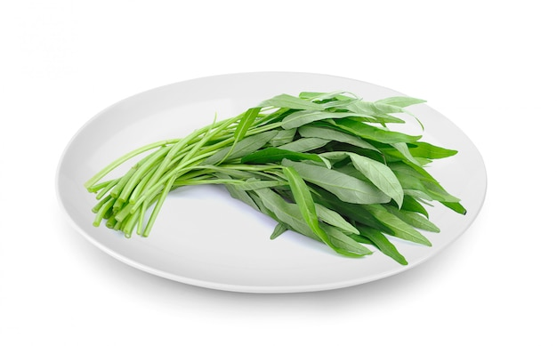 Water spinach in plate isolated on white surface