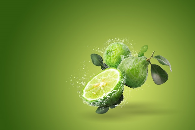 Water splashing on bergamot fruit on green background