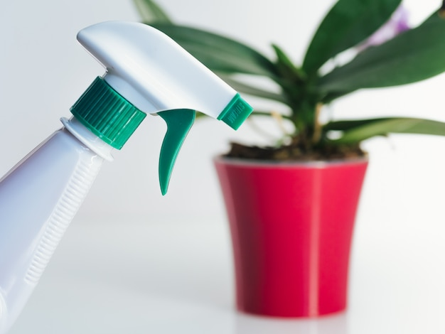 Водный спрей для растений