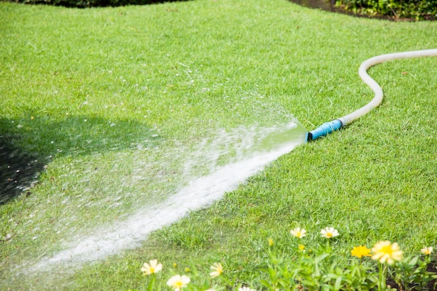 Water sprayed on lawns.