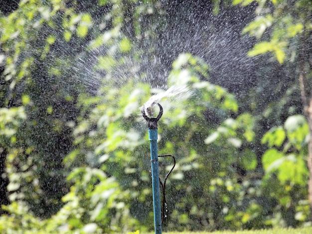 Water springer