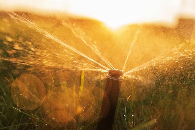Спринклерная система автоматического полива, поливающая газон на ярком фоне заката.