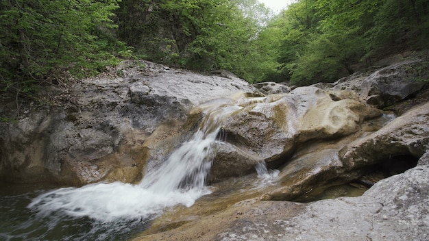 Water stream flowing over rocks in forest