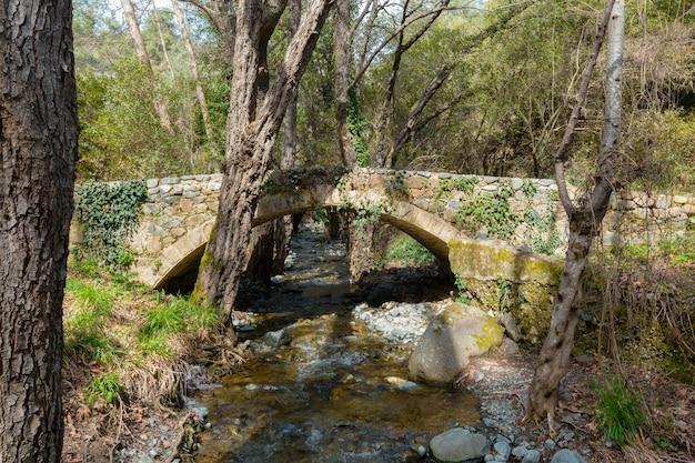 Water stream running over rocks