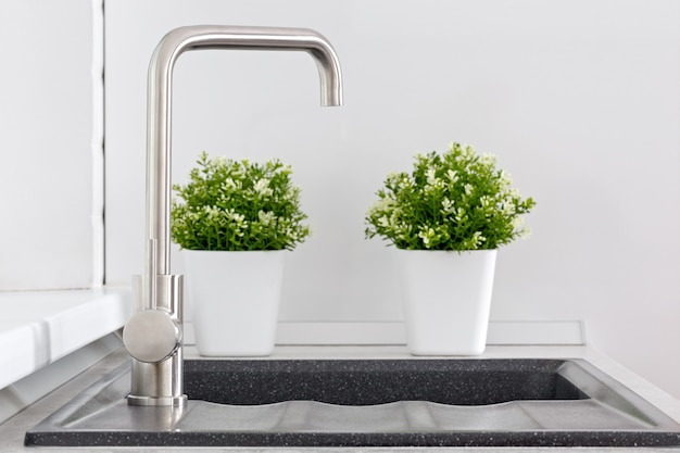 Water tap with sink and ornamental plants in the kitchen.
