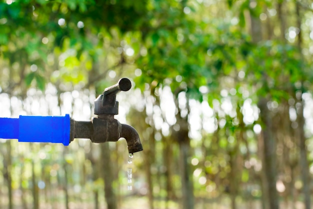 Water valve on green nature background, close up tap valve with blur background of green tree