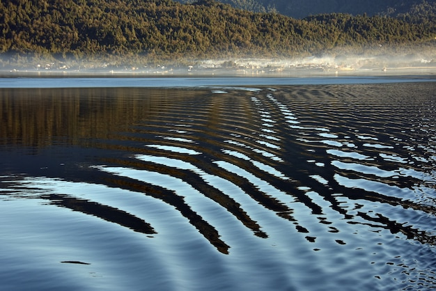 Вода с отражением на ней и лес на заднем плане