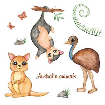 水彩オーストラリアの友達セット。カンガルー、ポッサム、エミューダチョウ孤立、小動物のクリップアート