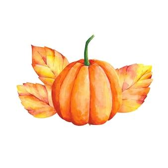 水彩画秋の構成オレンジ色のカボチャの葉白で隔離の秋の植物画