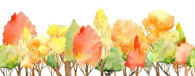 水彩の秋の森のシームレスな境界線。白い背景で隔離のカラフルなツリーヘッダー。