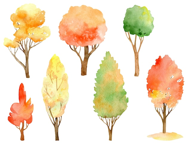 水彩の秋の木のコレクション。秋の色-オレンジ、黄色、赤、緑。