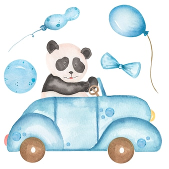 Watercolor baby panda drives the car illustration. safari animal clipart, blue balloons, forest bear clip art, baby shower graphics, kids birthday party cards, blue transport