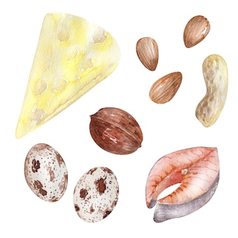Watercolor background picture of healthy food products