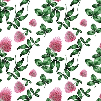 Watercolor background with clover field flower