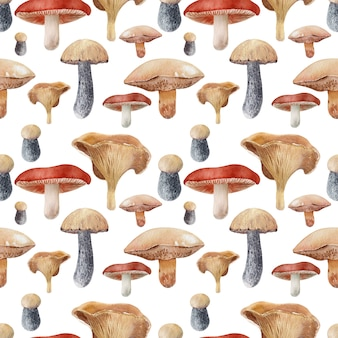 Watercolor background with different kinds of mushrooms
