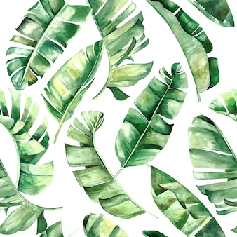 Watercolor banana tropical leaves seamless pattern illustration isolated