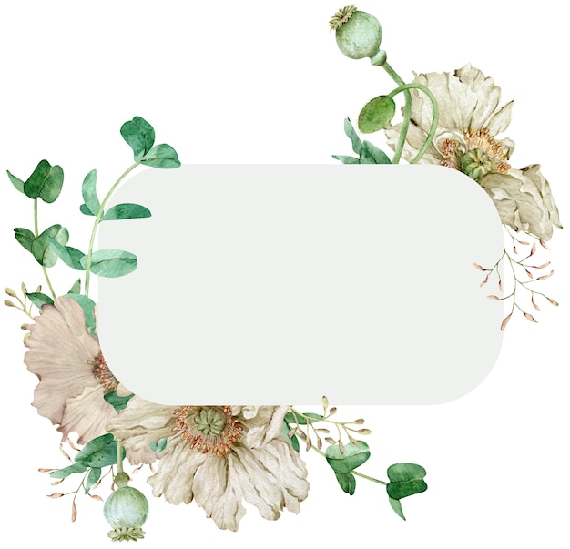 Рамка акварель красивые бежевые цветы. шаблон белые маки. рисованная иллюстрация.