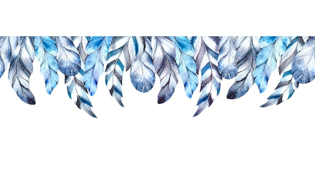Watercolor blue feathers on white background.