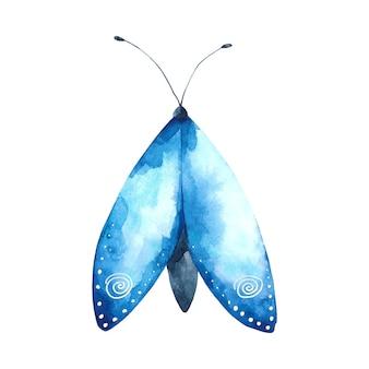 수채화 푸른 나방 그림 비행 곤충 클립 아트 흰색 배경에 고립