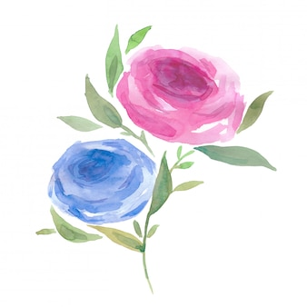 Watercolor blue and pink roses hand painted