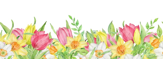 Watercolor border of pink and yellow tulips and daffodils