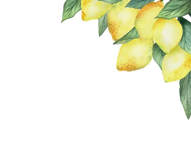 明るい黄色のレモンと白い背景、明るい夏のデザインの葉と水彩画の境界線。