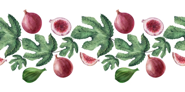 Watercolor borders with fig leaves and fruits
