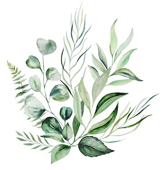 Watercolor botanical green leaves bouquet illustration isolated